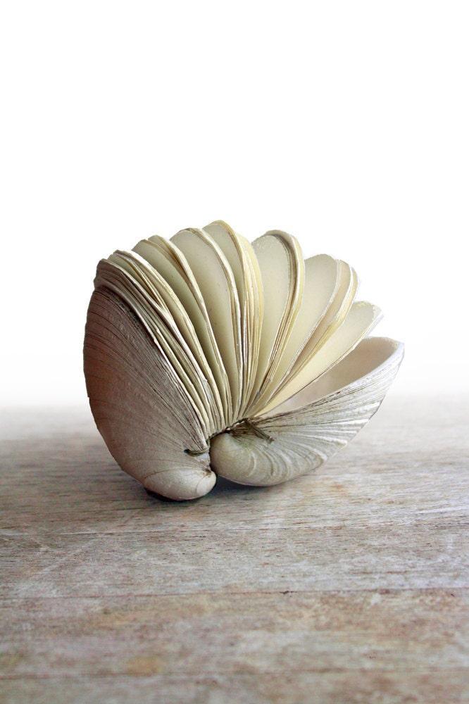 Предложение № 4 - Рукодельный Скульптура Clamshell книга