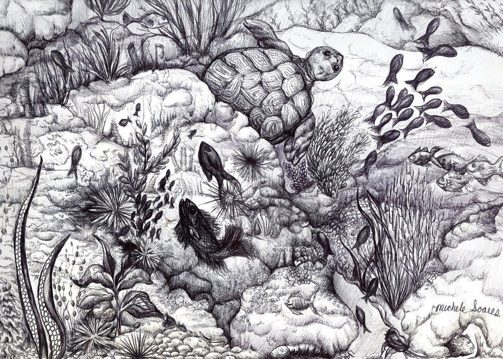Black and white Sea Life Art Print Ink Drawing by ...