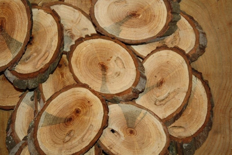 Items similar to 100 hickory wood slices angle cut 1 4 for How to cut wood slices