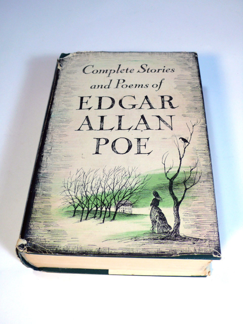 edgar allan poe research papers Essays and criticisms research (if you are working on a paper about edgar allan poe or his works, please read this) due to the overwhelming requests by students doing essays and term papers, i thought i'd better set the record straight on how to do research à la usher.