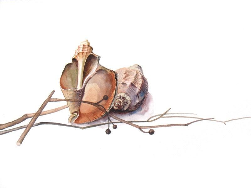 Rustic Painting Still Life Original Watercolor - Sea Shells