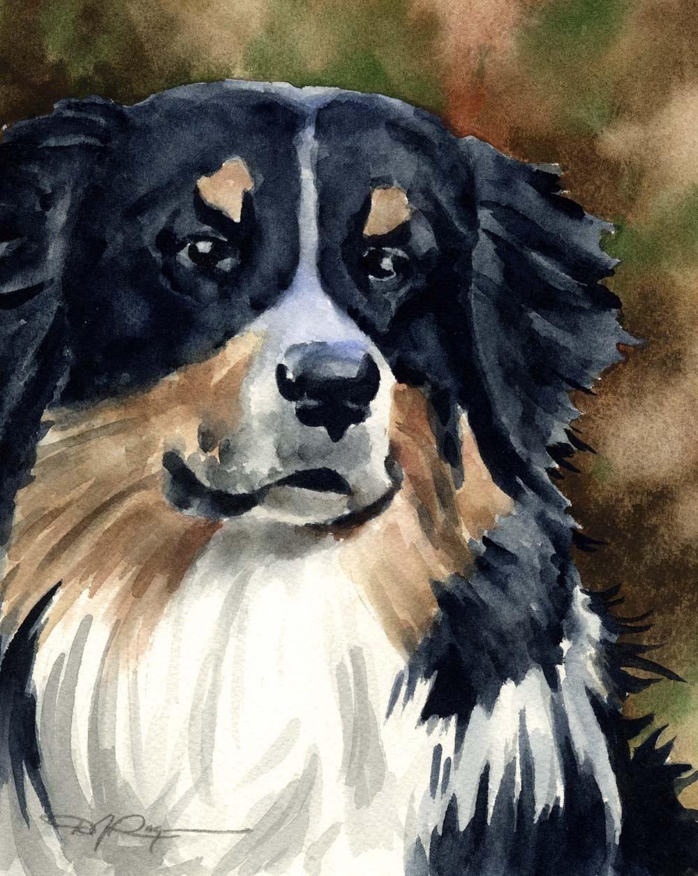 Australian shepherd dog art print signed by artist by k9artgallery
