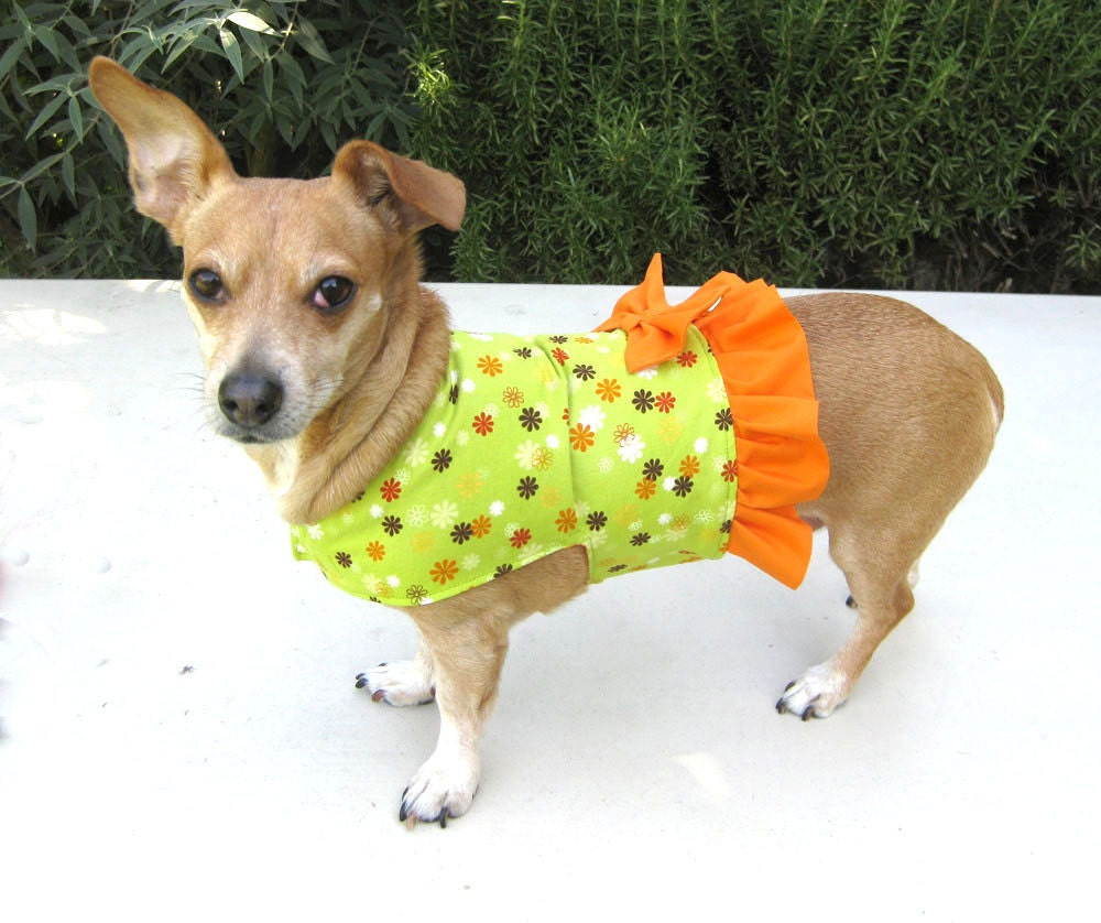Dog Dress Harness Green Flowers Orange Ruffle
