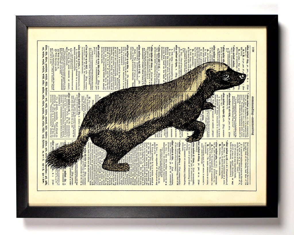 Honey Badger Ratel Animal Repurposed Book Print Upcycled Book Art Upcycled Vintage Book Page Antique Dictionary Buy 2 Get 1 FREE