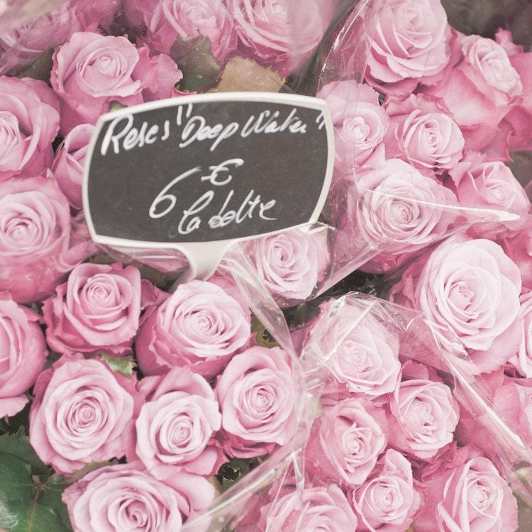 Paris Photo - Розы, Розы - Букет из розовых роз в парижских цветочного рынка, Франции, французский изобразительного искусства Путешествия Фотография