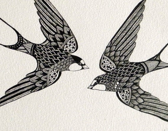 Drawing Lines With Swift : Original artwork ink line drawing swift birds by