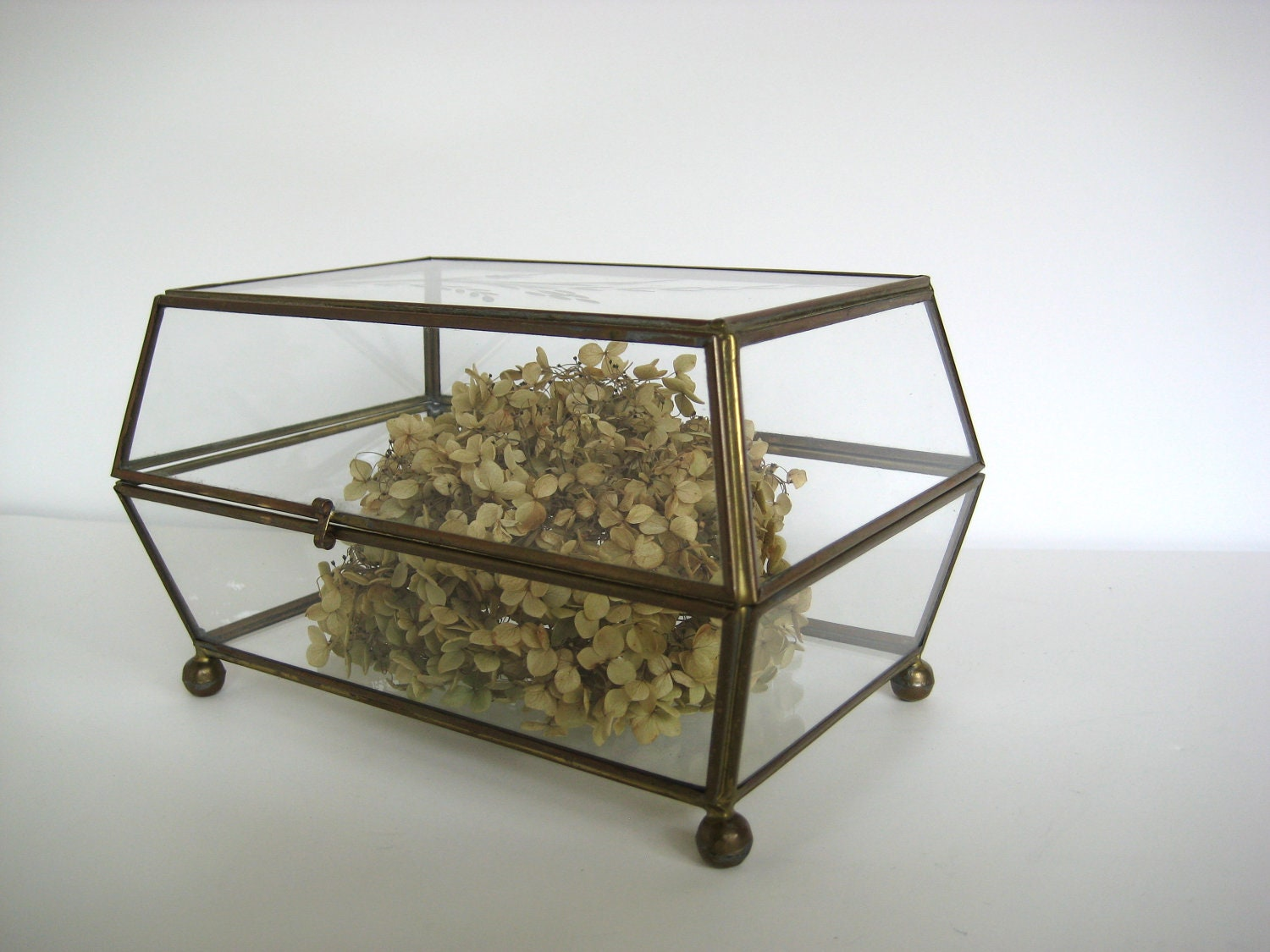 Glass display case, brass, glass box, terrarium - PatinaMarket