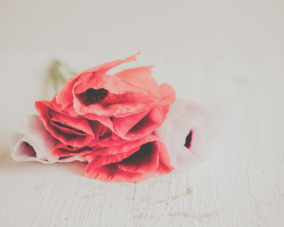 Red Poppy Wall Decor : Unavailable listing on etsy