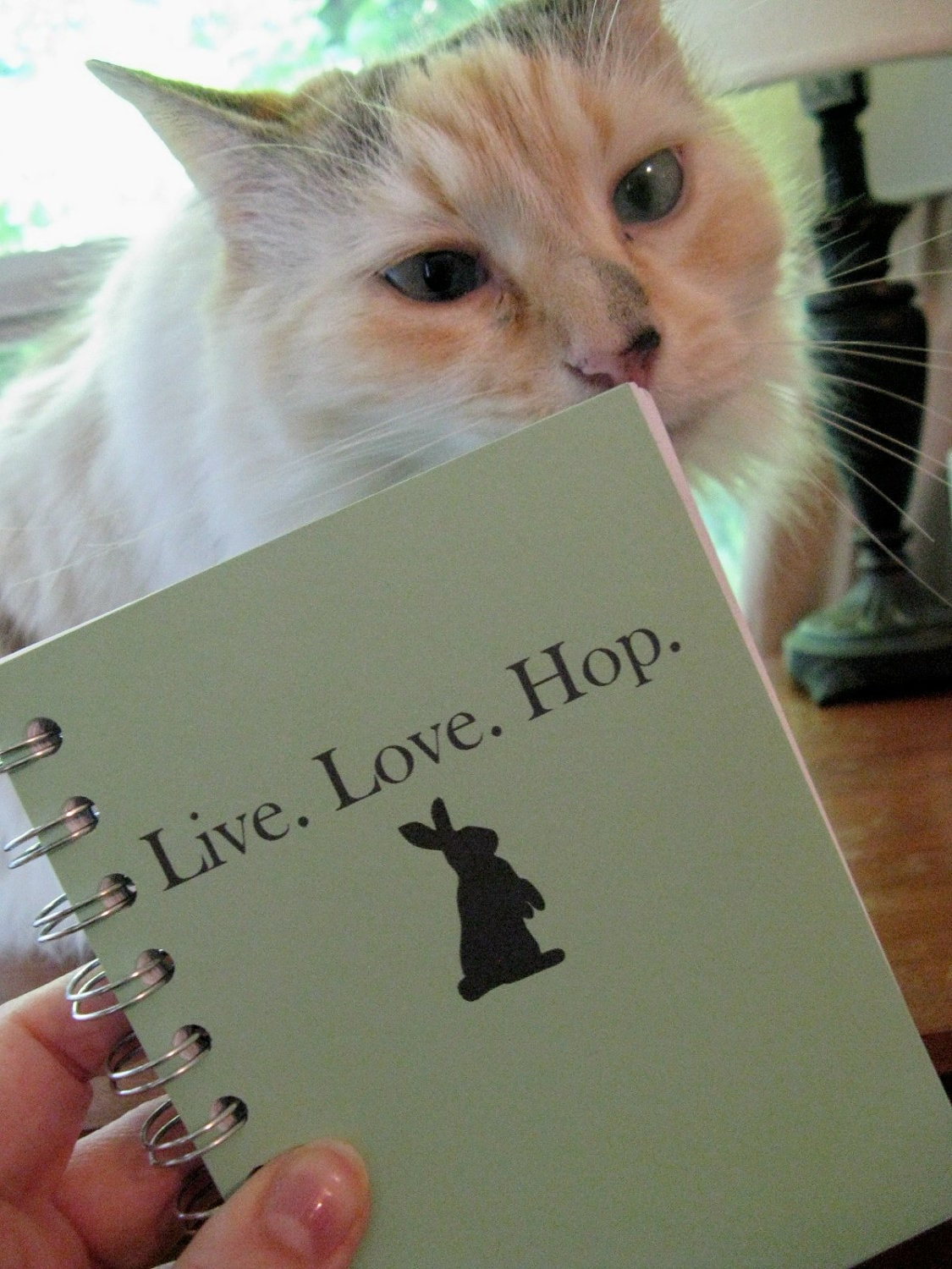 Journal - Live. Love. Hop.  (bunny) - Custom, Made to Order Sketchbook BLANK pages - BeadedTail