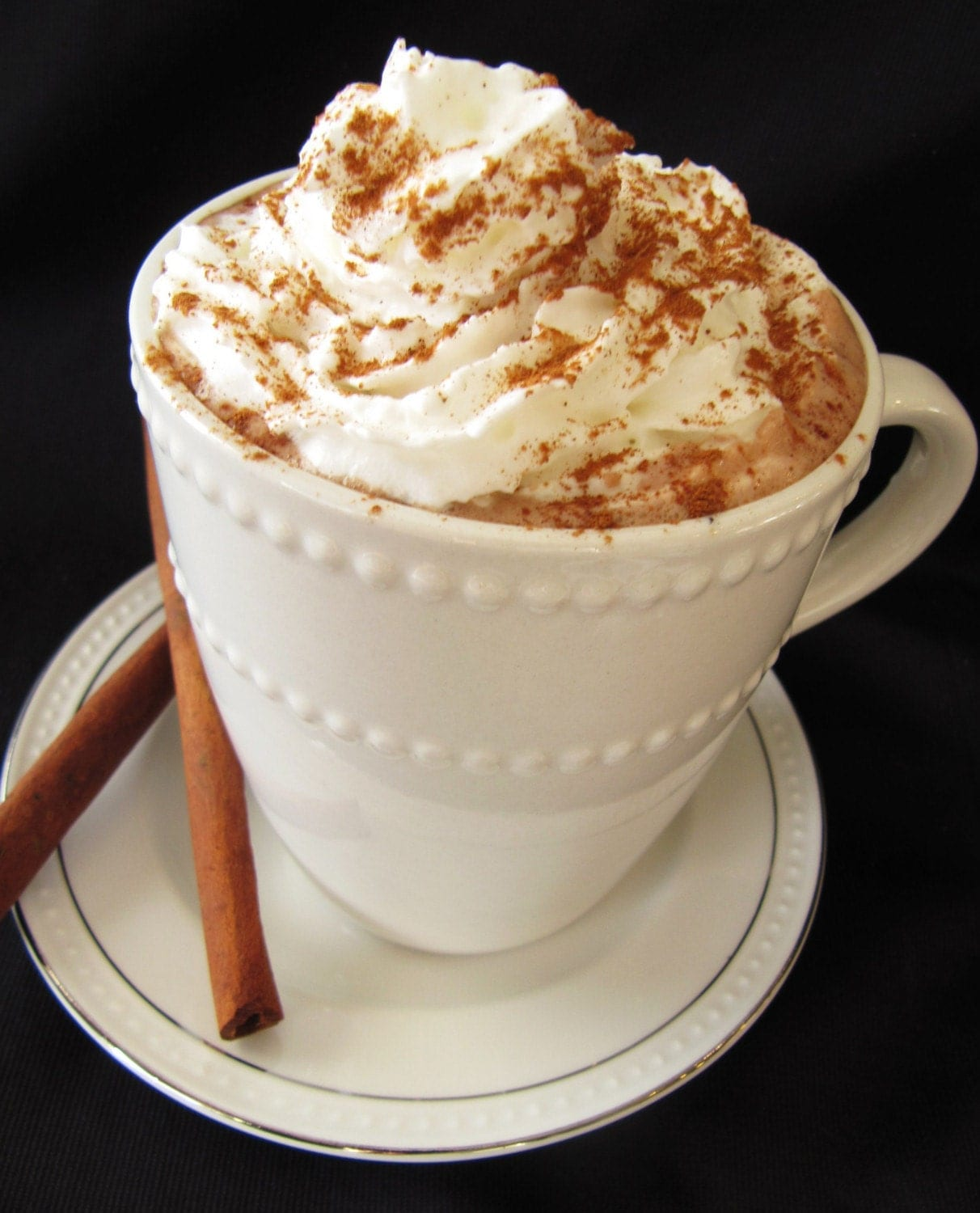 Gourmet Pumpkin Spice Hot Cocoa Mix (Large)