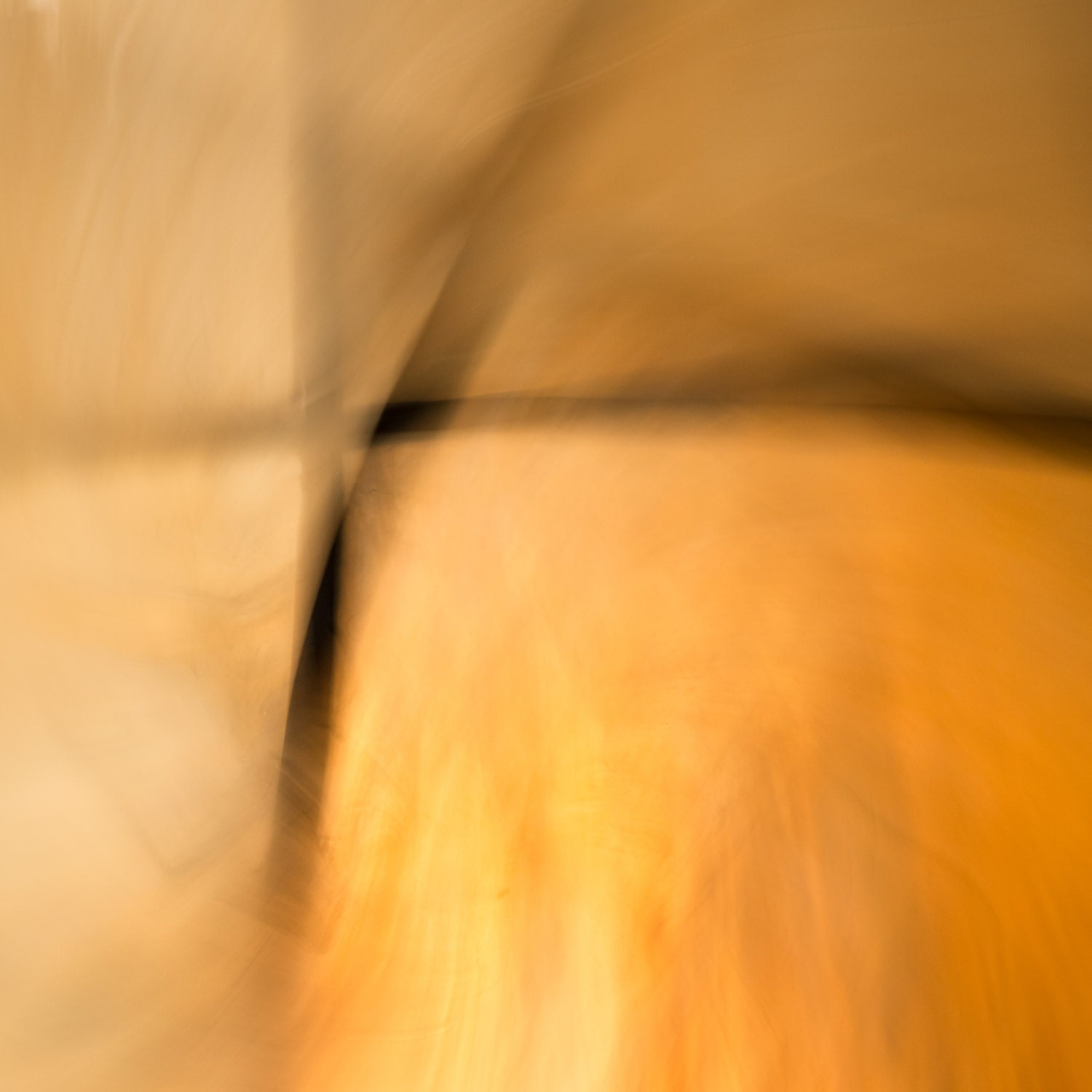 Stained Glass No 2, Fine Art Photography Print, Sacramental Sunlight Abstract Art, Golden Yellow Sunshine - charitykittler