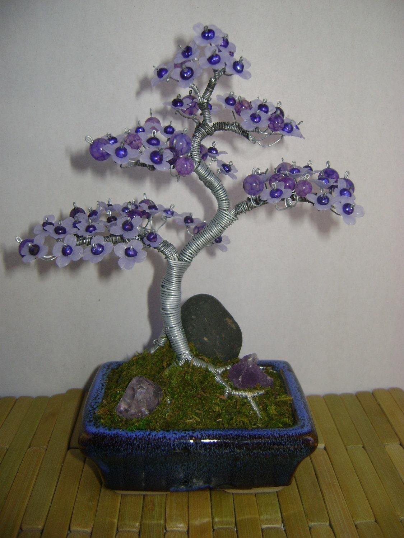 heritage bonsai dragon vein jacaranda tree by heritagebonsai. Black Bedroom Furniture Sets. Home Design Ideas