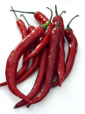 Organic Red Cayenne Pepper Seeds - MrNature