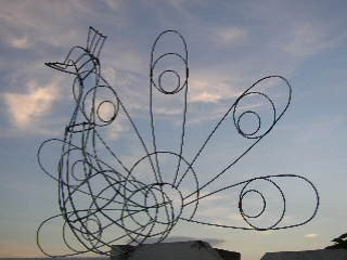 large peacock topiary wire frame design by geckomeister on