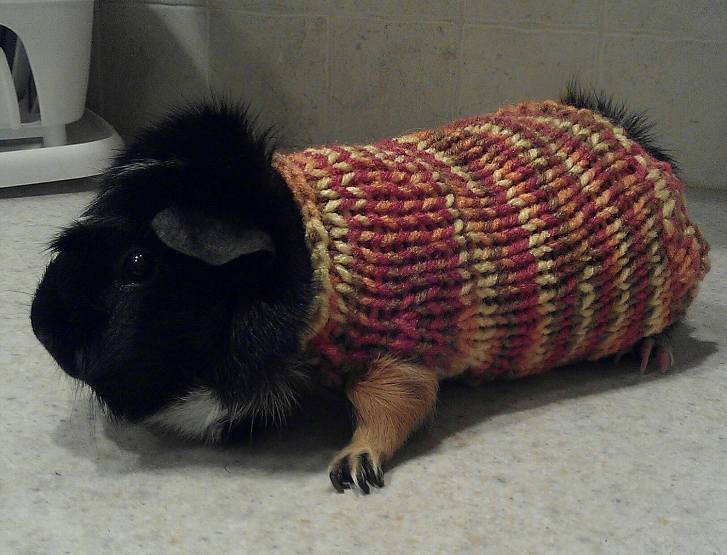 Hand Knit Guinea Pig Sweater by ChiliDogsPetSweaters on Etsy