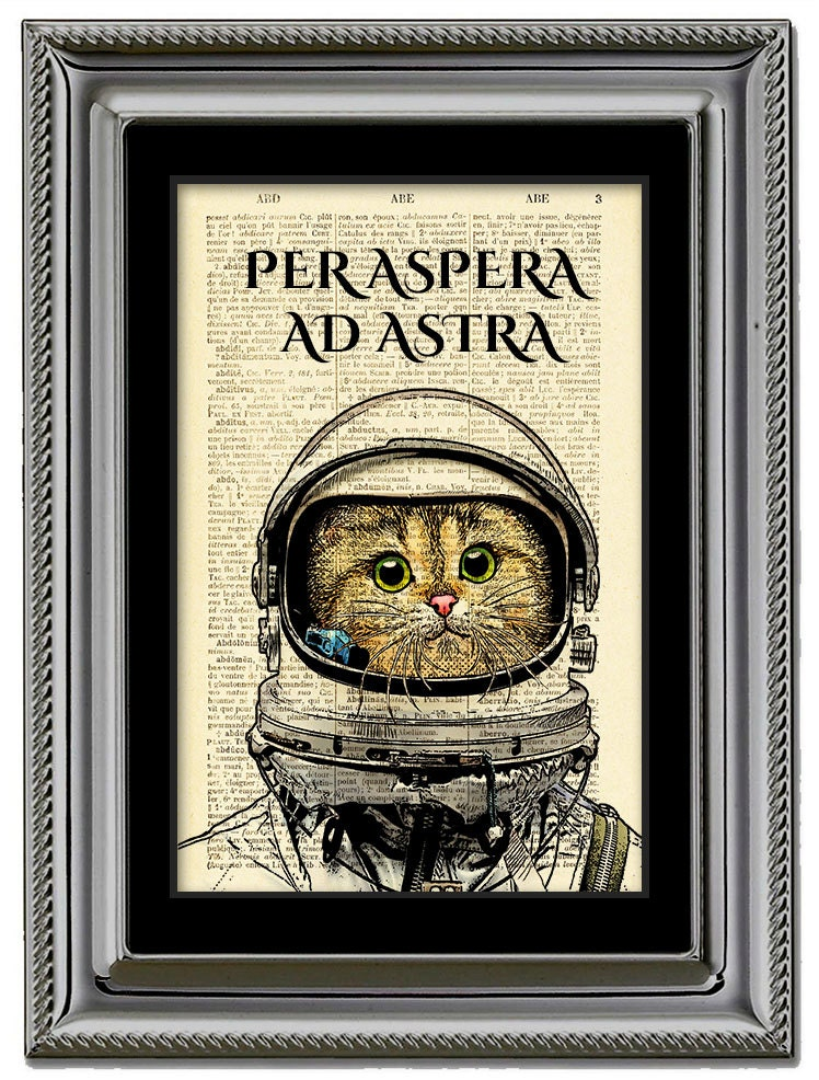 Per aspera ad astra календарь стрижек