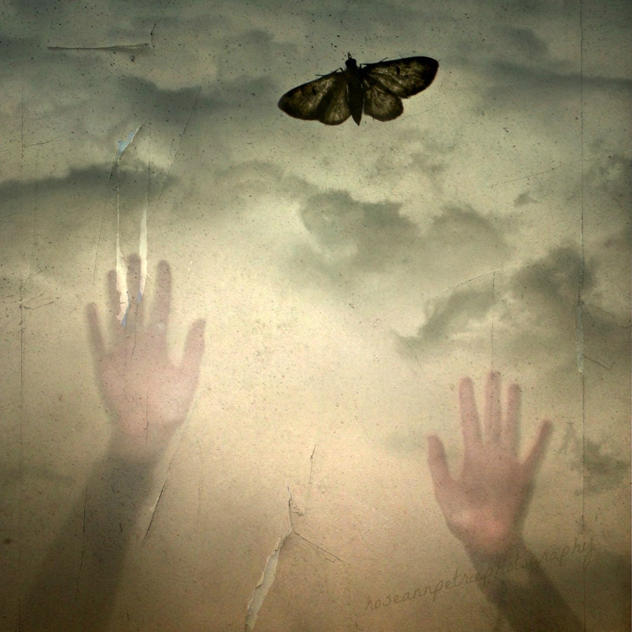 "12x12""..Within Reach..Hands, Moth, Sky..Gold..Zen..Surreal..Ethereal..Spiritual..Emotive..Fine Art Photography"