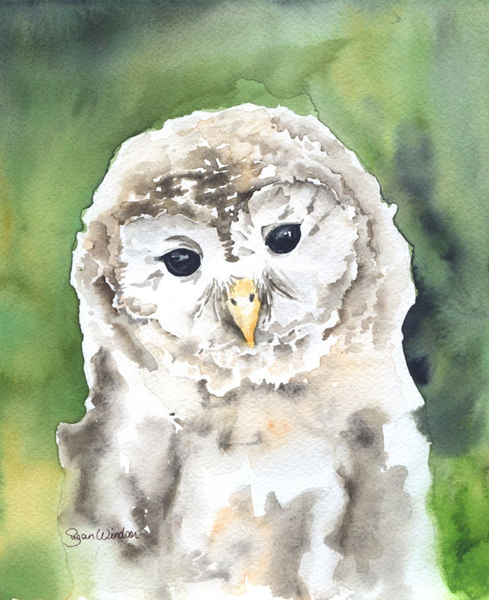 Barred Owl Watercolor Painting Giclee Print 8 x 10 - SusanWindsor