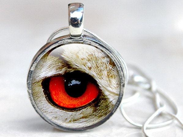 Eye Necklace  Bird Eye Necklace  Glass Eye Pendant  Silver Eye Necklace (eye 1)