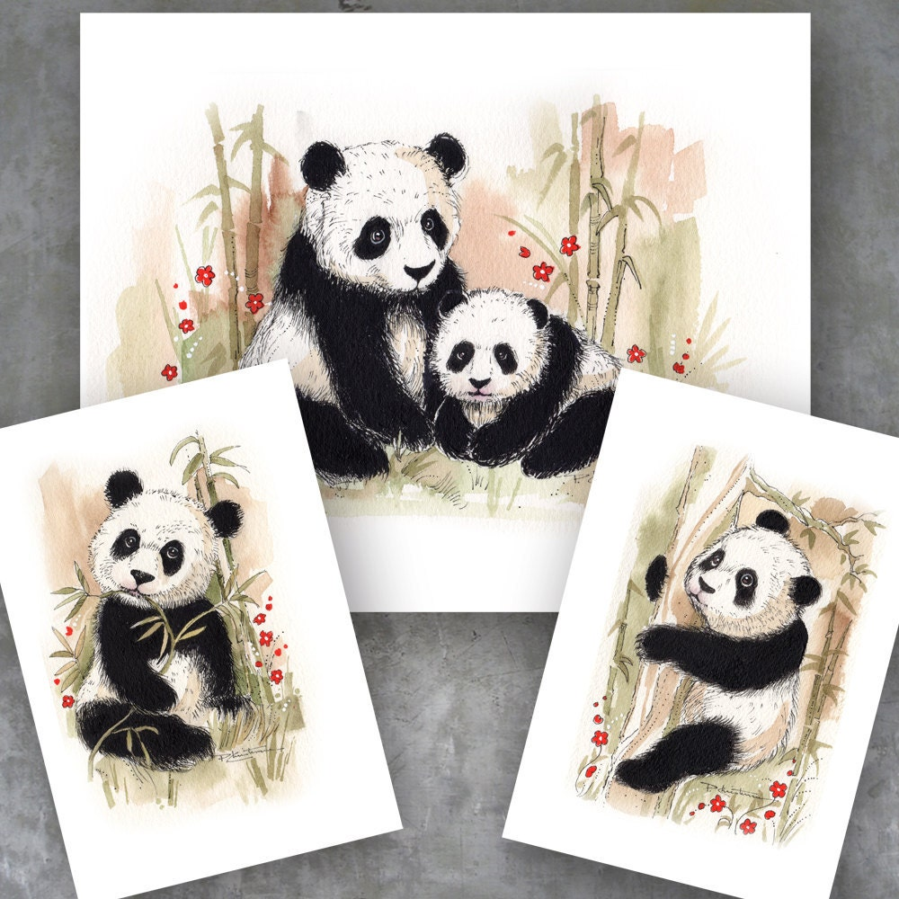 panda bear collector home decor art prints by