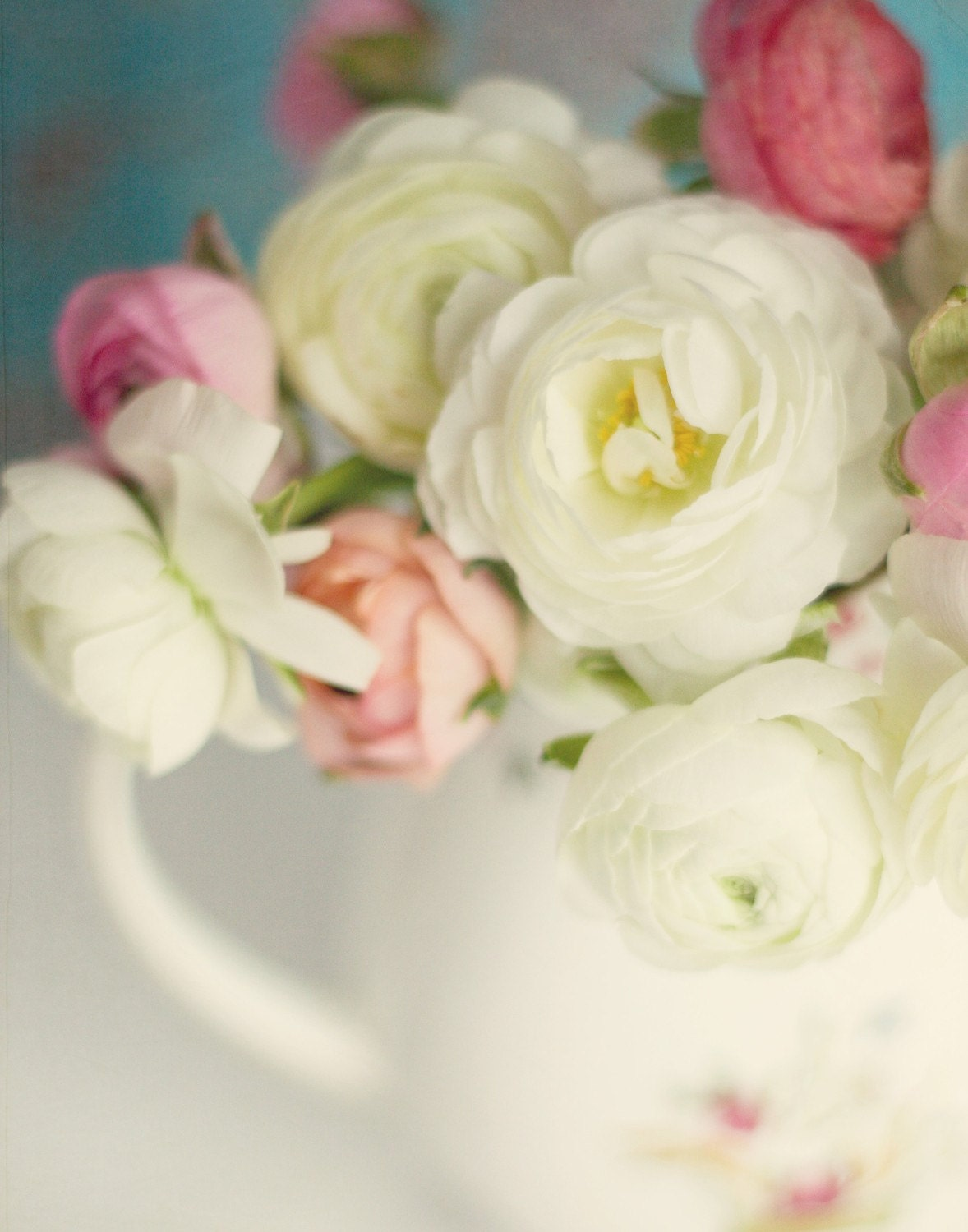 Beauty, 11x14 fine art print of white and pink ranunculus in a cream pitcher