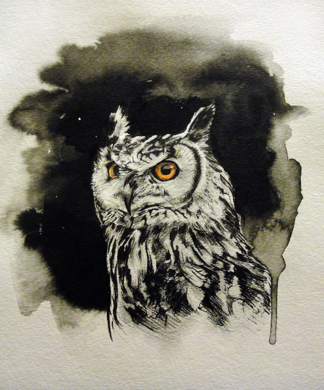 Great Horned Owl IllustrationGreat Horned Owl Illustration