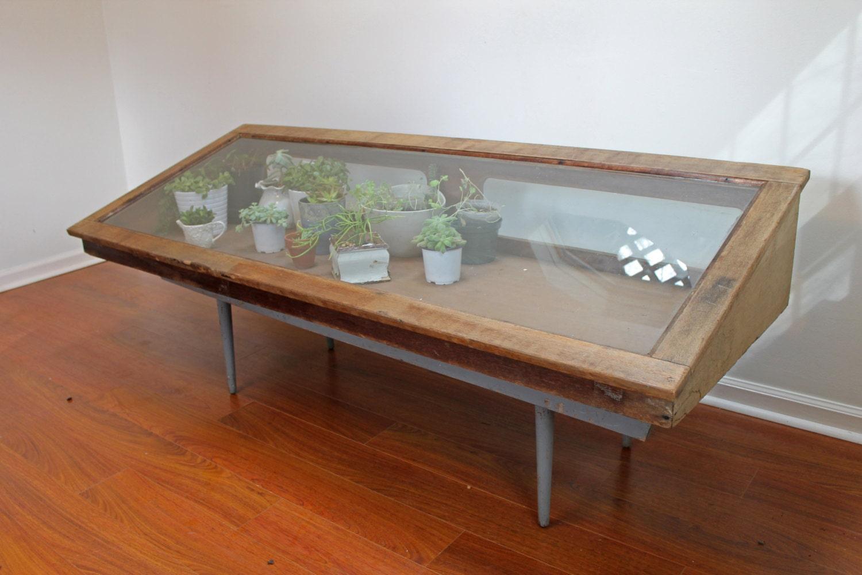 ... Display / Glass Terrarium Greenhouse / Countertop Retail Fixture