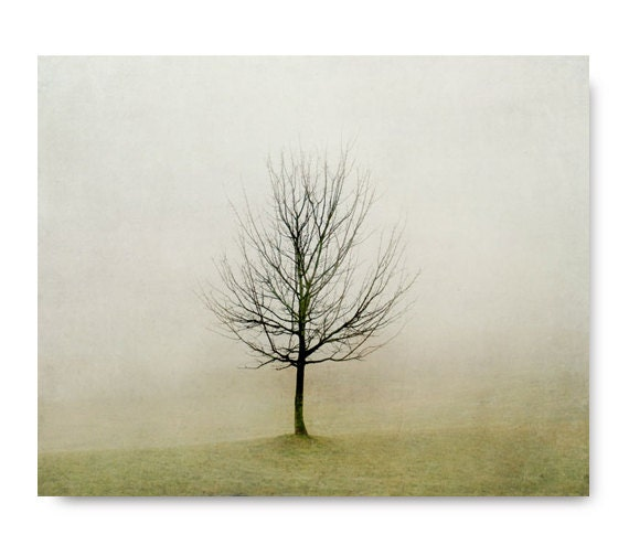 Minimalist Tree Photo, fog, foggy landscape, fine art photography, olive green, rustic home decor, living room decor, foggy, landscape - semisweetstudios