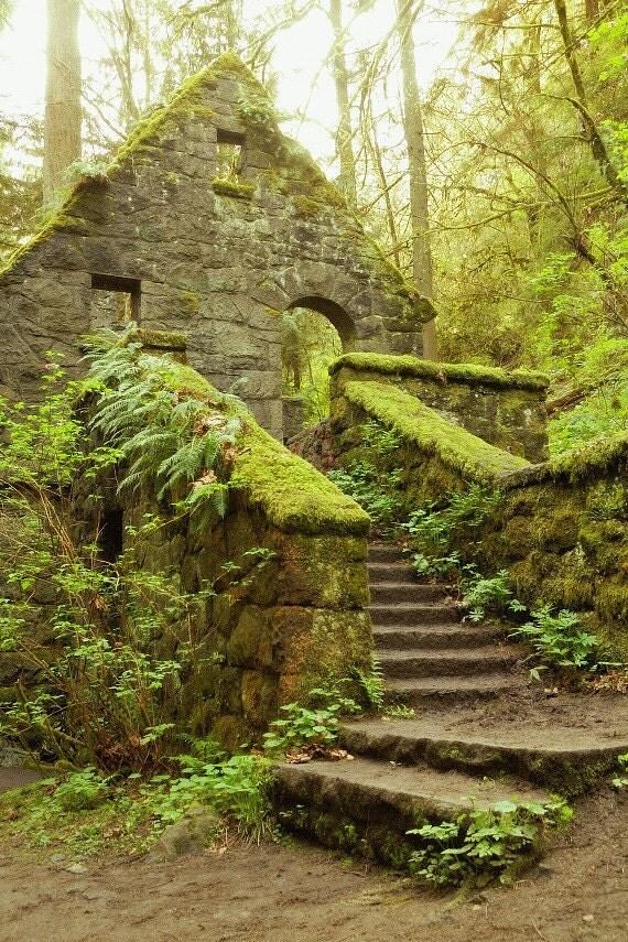 The Stone House Forest Park Portland Oregon Fine Art by
