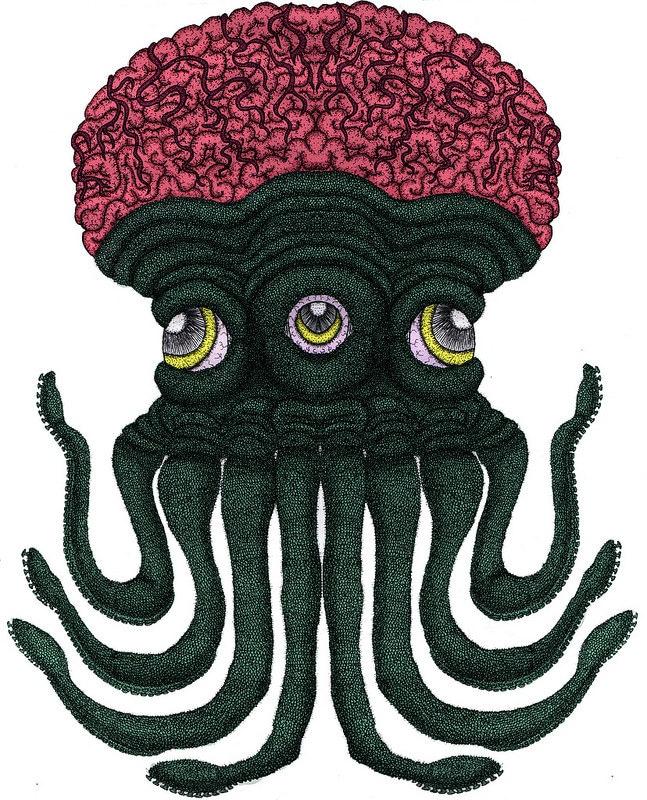 Octopus brain