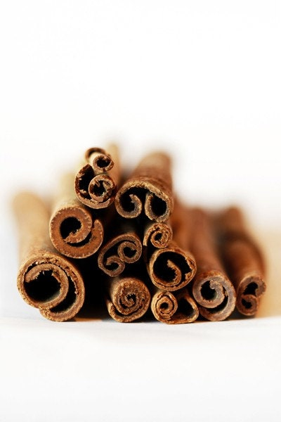 Curlz 5 x 7 Print. Food Photography. Cinnamon Sticks, Spicy, Abstract, Kitchen, Brown, White - PhotographyByAnita