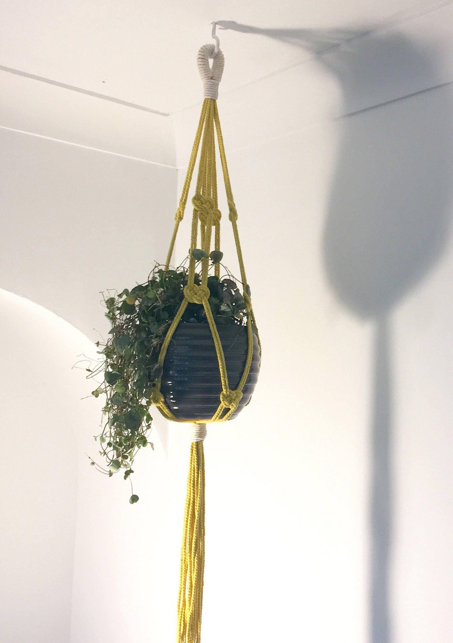 Coloured Macrame plant hanger Josephine hanging planter  houseplant  boho  retro  scandi  midcentury  plant holder