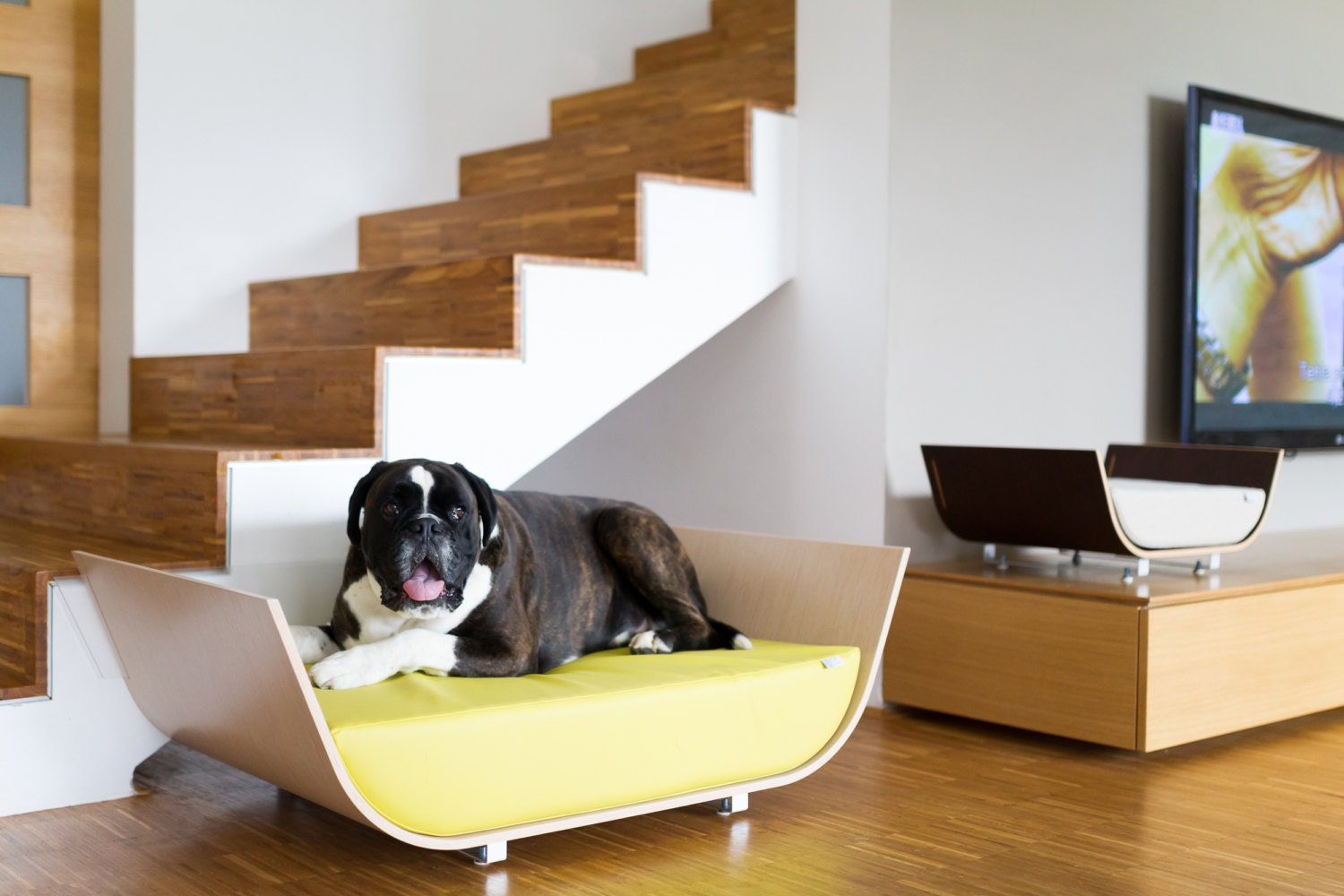 Modern Bed for Dog in natural materials, veneer Fineline OAK, cover pillow Artificial leather