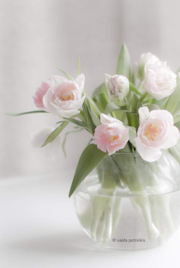 Gentleness - 4x6 inches Fine Art Photograph - a natural bouquet of soft pink tulips - floral art, very romantic - VaidaPhoto