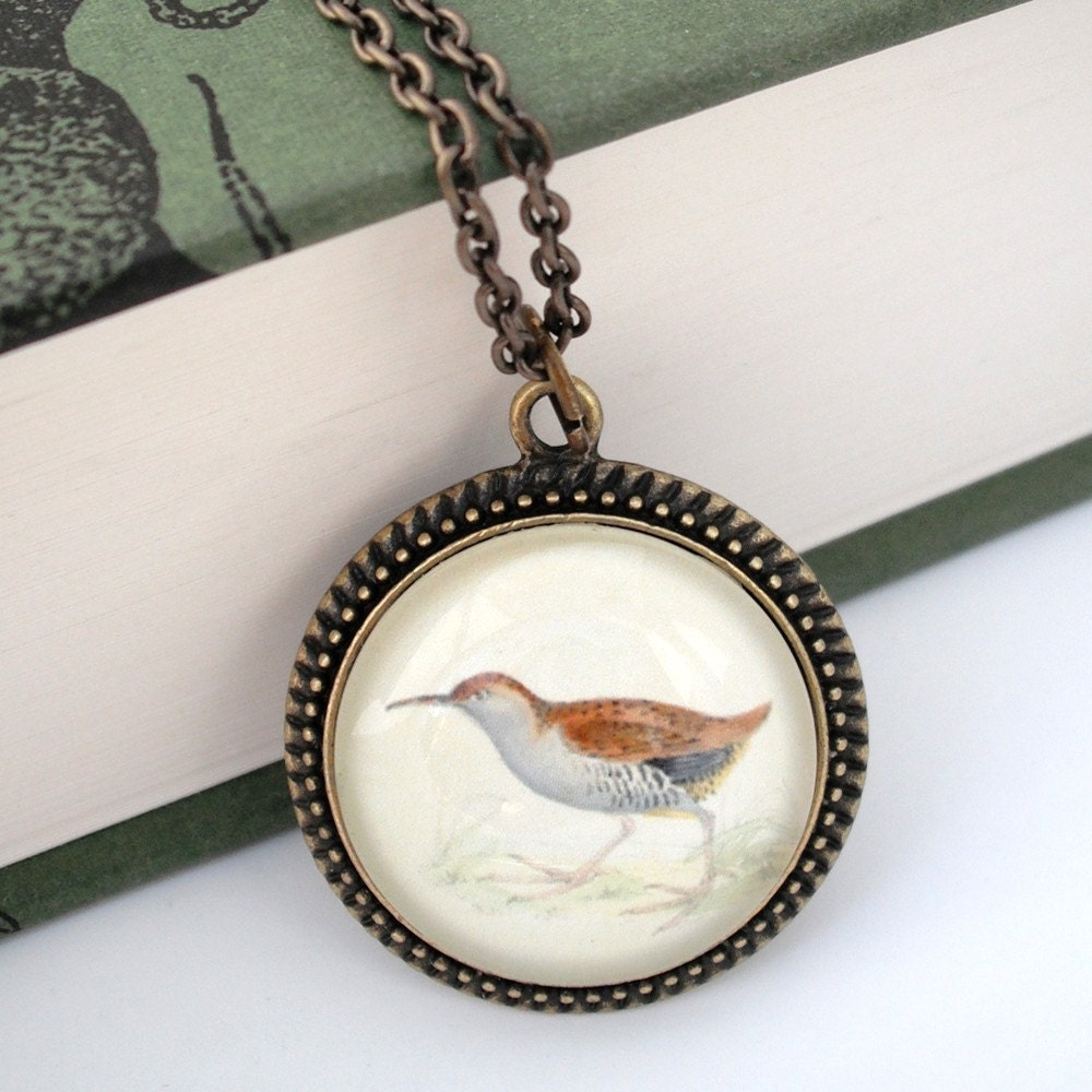 Sandpiper Natural History Nautical Pendant Necklace Bird - thelittlechickadee