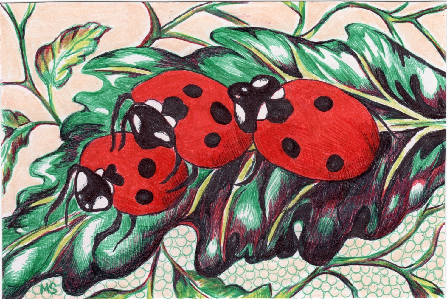 "Ladybug Drawing - Ladybug Art - Nature Wall Decor - Color Pencil, Pen and Ink Drawing - Lady Bugs Doing It - 4x6"" Original Drawing - Michelebuttons"