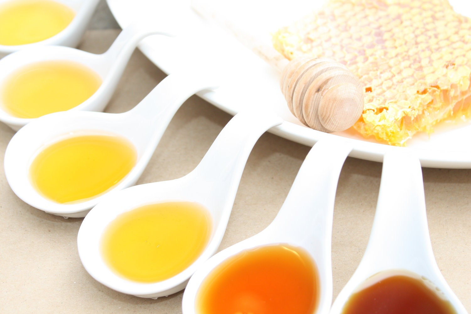 A Honey Tasting  --  One sampler of  6 Varieties of Honey's from the Hive Ohio Proud