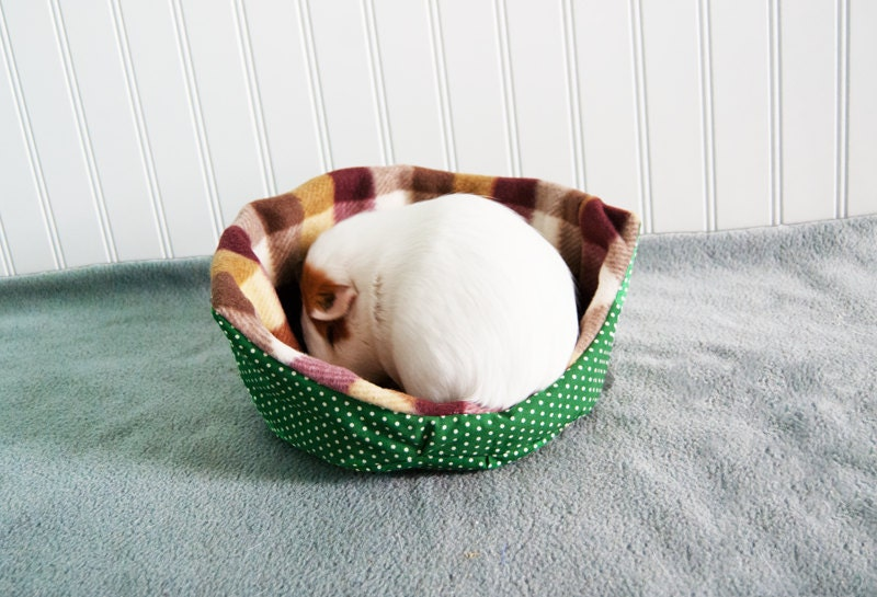 Green dots and maroon plaid guinea pig cuddle cup by for Cup cozy pillow