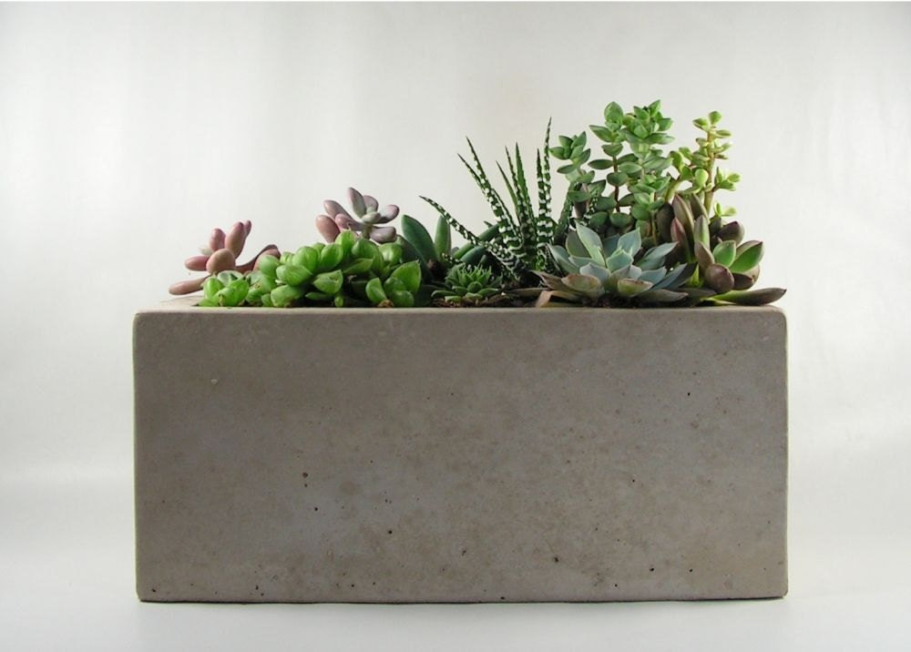 Rectangular concrete planter by roughfusion on etsy Concrete planters