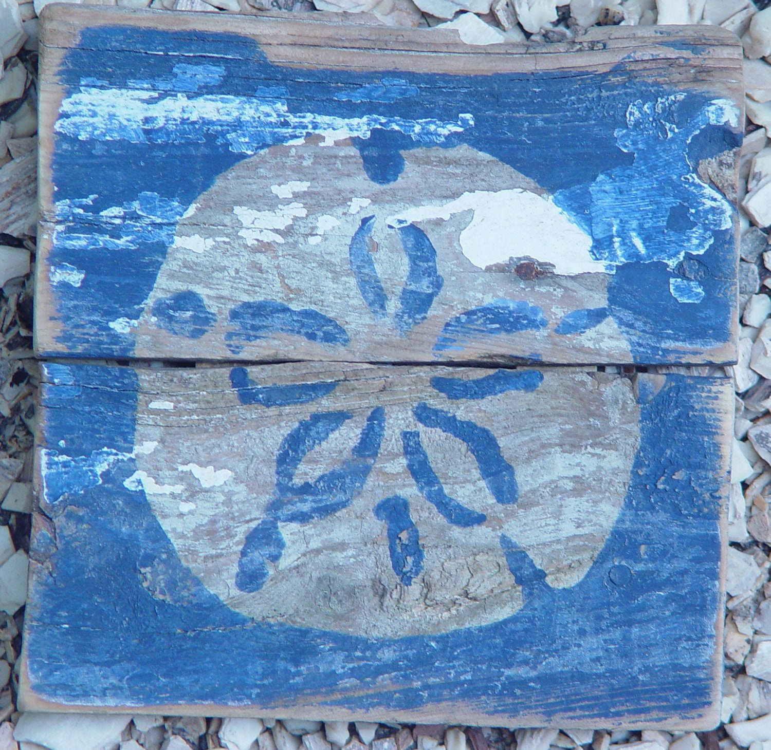 Beach Art Shabby Chic Wall Art Sandollar On Reclaimed Picket Fencing
