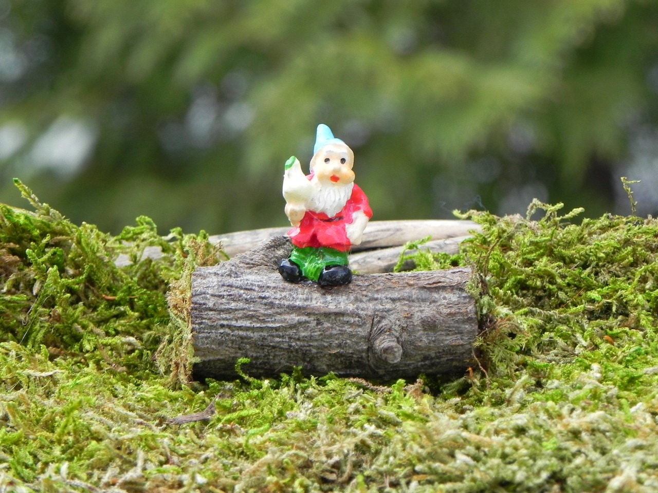 Fairy Garden Gnome On Log Miniature For By Thelittlehedgerow