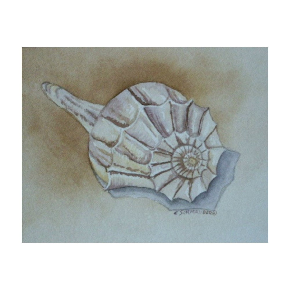 Shell 2 - Limited Edition Giclee
