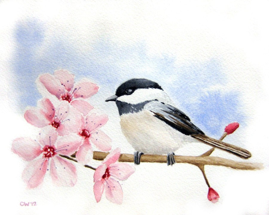Chickadee in Cherry Blossoms - 5x7 inch Signed Fine Art Print - pink and blue  home decor bird art - paintedbliss