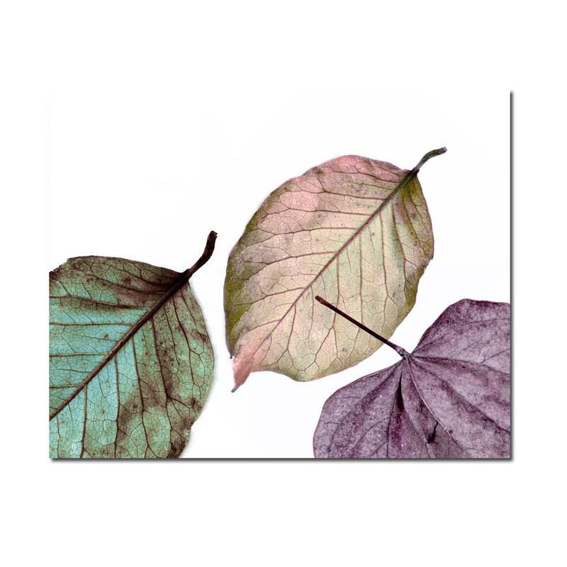 Fairy Leaves Surreal Photography  -Minimalist Nature Decor Print Teal Purple Pink - galleryzooart