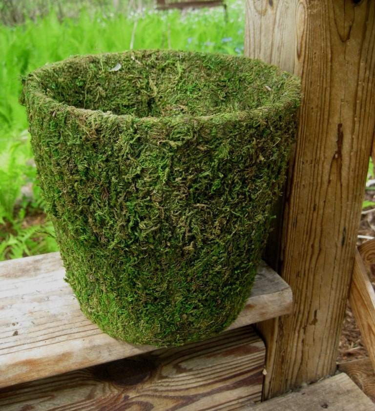 Moss Covered Pots for WEDDING CENTERPIECES Garden Parties
