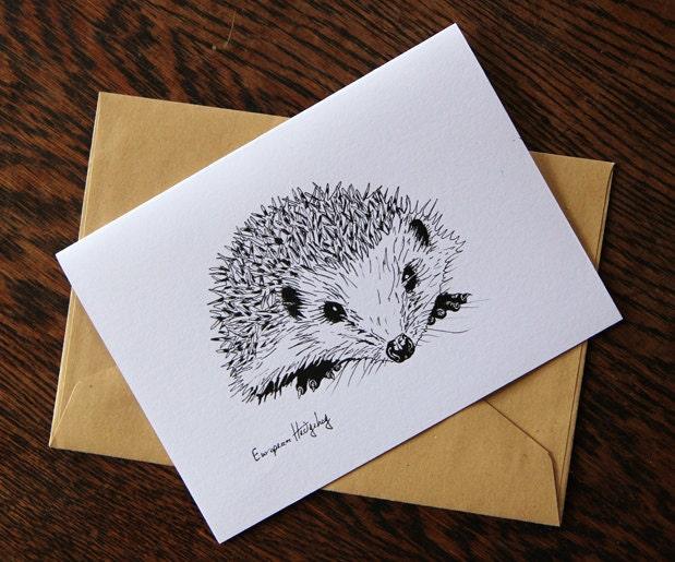 Pack of 6 Hedgehog blank cards