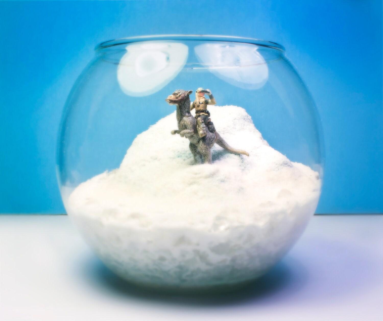 Luke Skywalker on Tauntaun - Planet Hoth Terrarium / Diorama - Empire Strikes Back - Megatone230