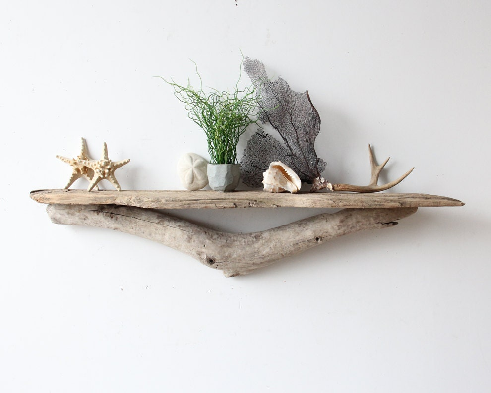 Large sculptural natural driftwood shelf perfect by oceanswept for Driftwood wall shelves