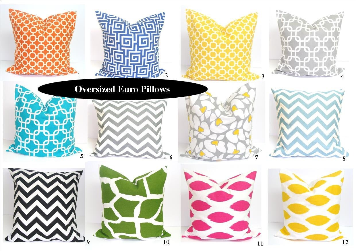 Euro Pillow Covers.24x24 inch Designer Pillow Covers.Printed Fabric Front and Back.Floor Cushions