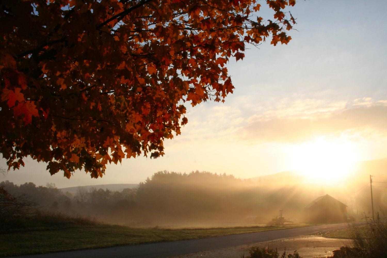 Autumn Morning - wingandaprayerfarm